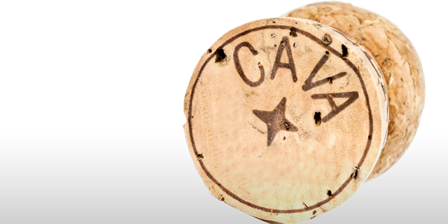 cava-cork-gradient-main